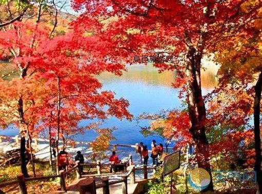 【去香山看红叶】北京香山一日游